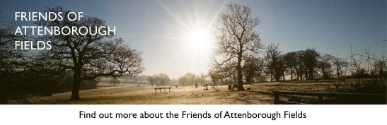 Attenborough's Fields