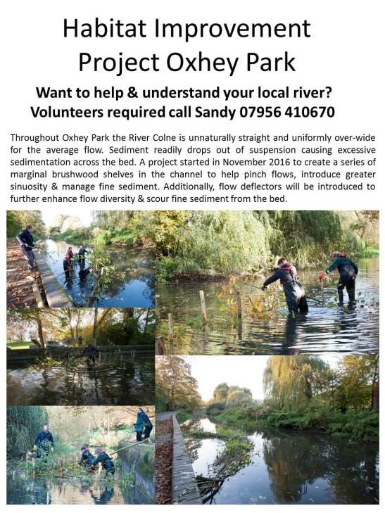 River Colne Habitat Improvement Project Oxhey Park2.jpg