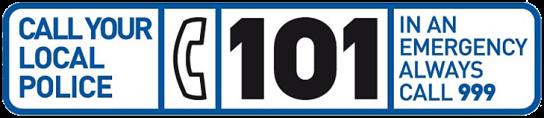 101-nobg.png