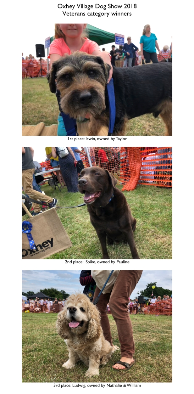 Dogs 2018 Veterans.jpeg